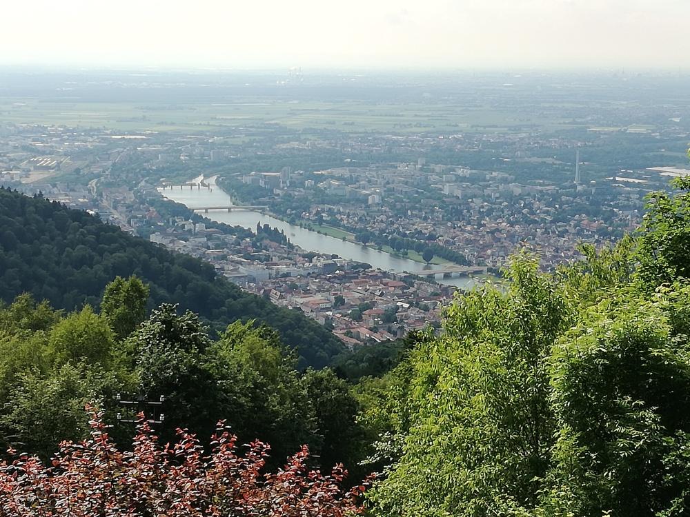 Aussicht vom Königsstuhl auf Heidelberg und den Neckar