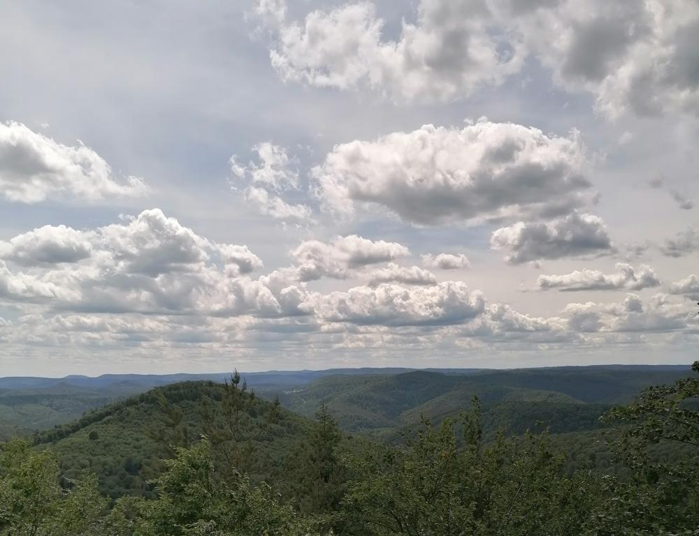 Aussicht auf die Hügel der Pfalz vom Drachenfelsen aus.